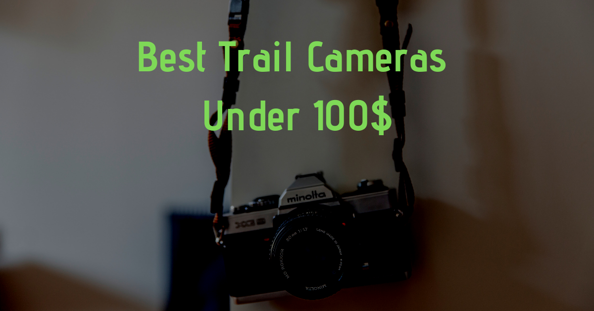 Best Trail Cameras Under 100