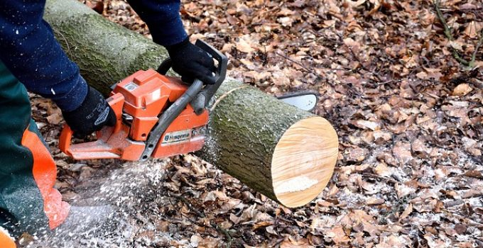 best gas chainsaws reviews
