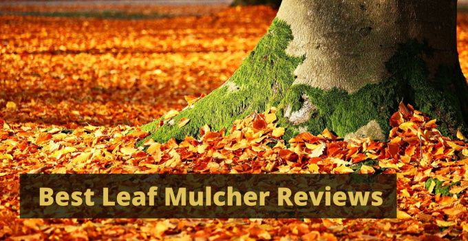 best leaf mulchers